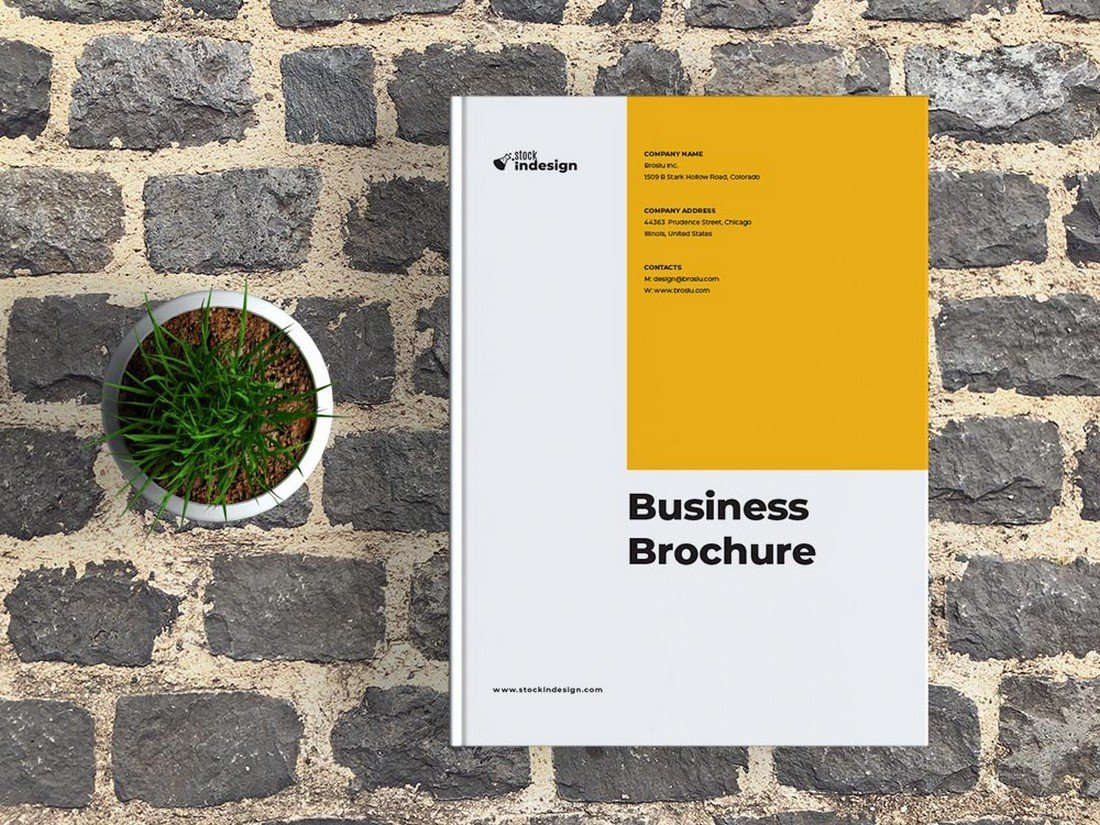 Free Business Brochure Affinity Publisher Template