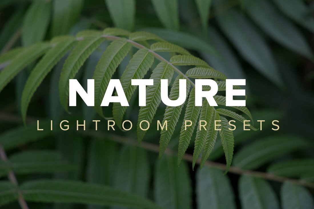 Nature VSCO Lightroom Presets