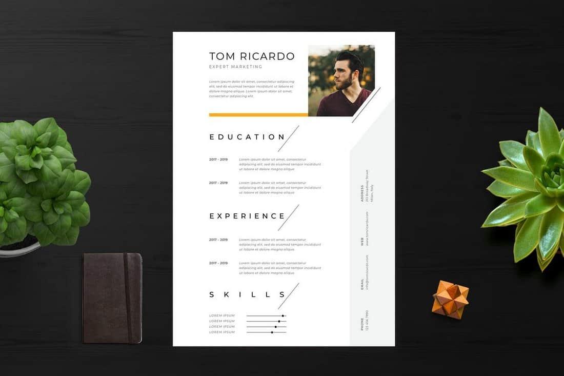 Clean & Minimalist Resume Template