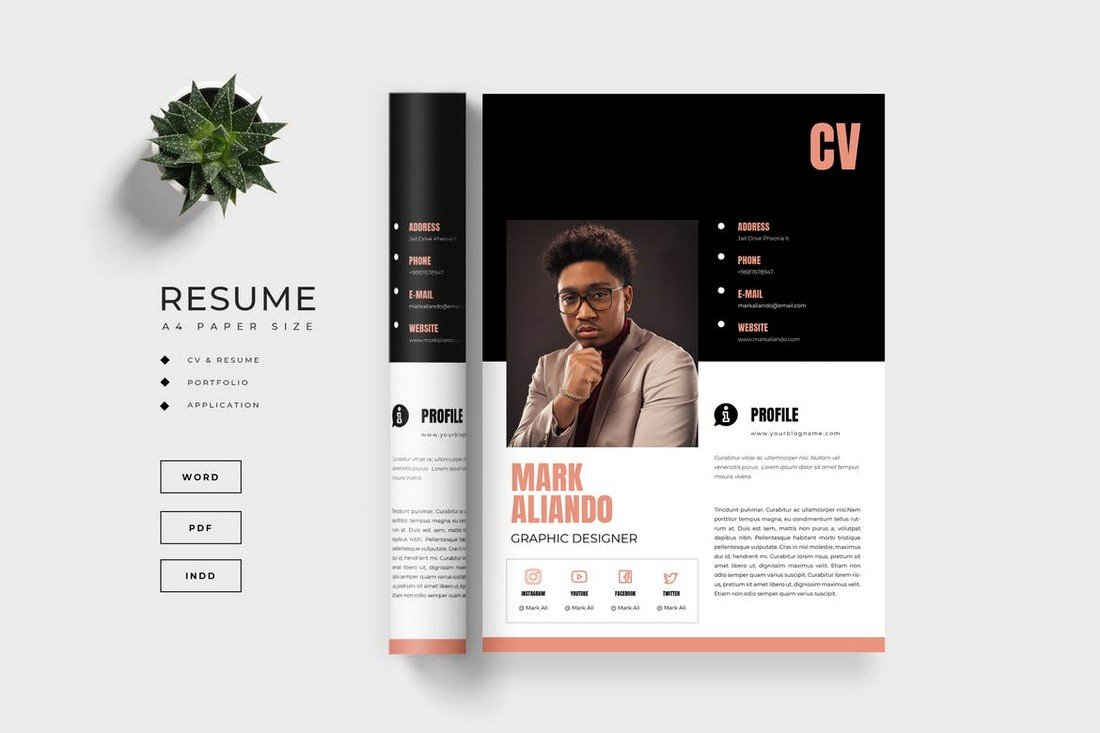 Modern Resume Template (Word & INDD)