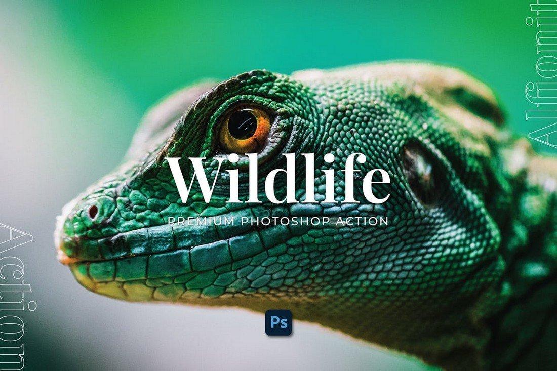 Wildlife Photography Photoshop Action